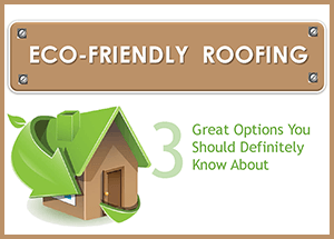 Infographic Eco Friendly Portland Roofing Portland