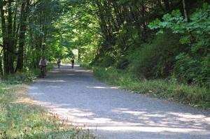 Leif Erikson Drive Forest Park Portland Oregon
