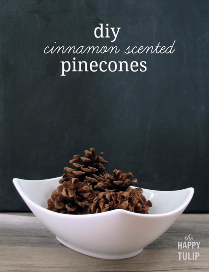 diy cinnamon scented pine cones