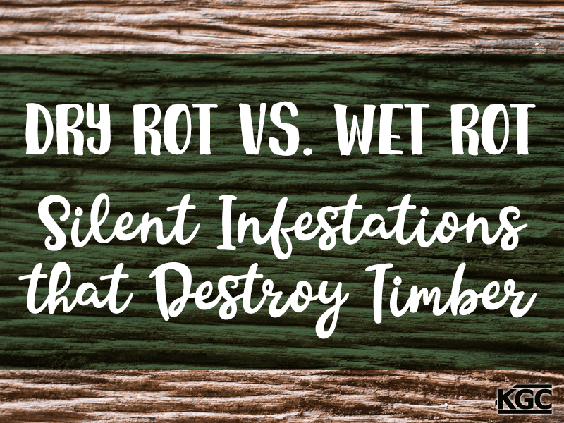 TN-Dry Rot Versus Wet Rot Silent Infestations that Destroy Timber